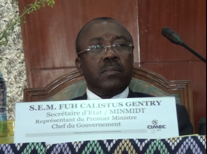 Cameroon Boosts Billions Of Mineral Reserves